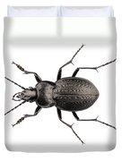 Beetle Species Carabus Coriaceus Duvet Cover