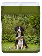 Bernese Mountain & Jack Russell Puppies Duvet Cover