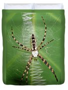 Black And Yellow Garden Spider Duvet Cover