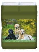 Black And Yellow Labrador Retrievers Duvet Cover