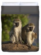 Black-faced Vervet Monkey Duvet Cover