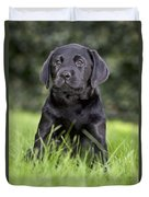 Black Labrador Puppy Duvet Cover
