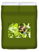 Black Raspberries 2 Duvet Cover