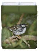 Blackpoll Warbler Duvet Cover