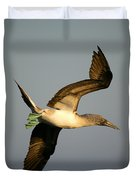 Blue-footed Booby, Sula Nebouxii, Santa Duvet Cover