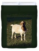 Boer Goat  Duvet Cover