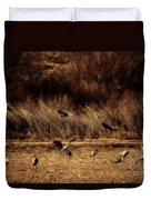 Bosque Del Apache New Mexico-sand Cranes V2 Duvet Cover