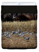 Bosque Del Apache New Mexico-sand Cranes V3 Duvet Cover