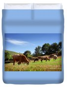 Bovine Cattle  Duvet Cover by Carlos Caetano