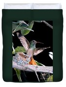 Buff-bellied Hummingbird At Nest Duvet Cover