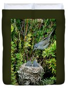 California Gnatcatcher Duvet Cover