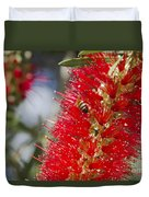 Callistemon Citrinus - Crimson Bottlebrush Duvet Cover