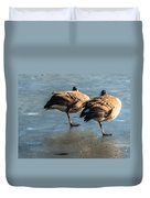 Canada Geese At Rest Duvet Cover