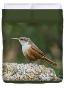 Canyon Wren Duvet Cover