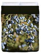 Cedar Blue Duvet Cover