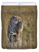 Cheetah Carrying Its Prey Duvet Cover