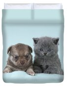 Chihuahua Puppy And British Shorthair Duvet Cover