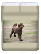 Chocolate Labradoodle Running In Field Duvet Cover