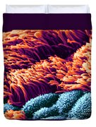 Cilia In Lung, Sem Duvet Cover