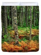 Cinnamon Ferns And Red Spruce Trees Duvet Cover
