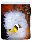 Clarks Anemonefish In White Anemone Duvet Cover
