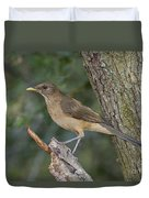 Clay-colored Thrush Duvet Cover