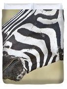 Close-up Of A Burchells Zebra Equus Duvet Cover