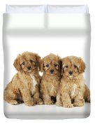 Cockapoo Puppy Dogs Duvet Cover