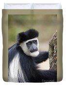 Colobus Monkey Duvet Cover