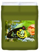 Common Birdwing Butterfly Duvet Cover