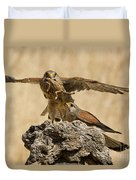 Common Kestrel Falco Tinnunculus Duvet Cover