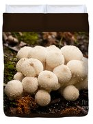Common Puffball Mushrooms Lycoperdon Perlatum Duvet Cover