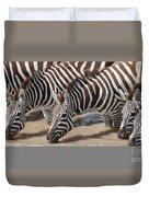 Common Zebras Drinking Water Duvet Cover