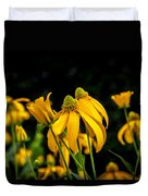 Coneflowers Echinacea Yellow Painted Duvet Cover by Rich Franco
