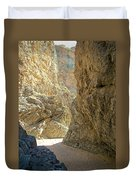 Contrasting Canyon Colors In Big Painted Canyon Trail In Mecca Hills-ca Duvet Cover