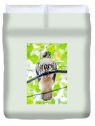 Coopers Hawk Perched On Tree Watching For Small Prey Duvet Cover