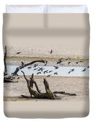 Coots-mud Hens Duvet Cover