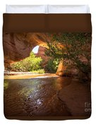 Coyote Natural Bridge - Coyote Gulch - Utah Duvet Cover by Gary Whitton
