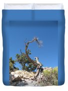 Dead Tree At Grand Canyon Duvet Cover
