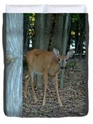Deer 1 Duvet Cover
