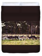 Deer In The Phoenix Park - Dublin Duvet Cover by Barry O Carroll