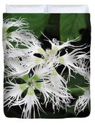 Dianthus Superbus - White Duvet Cover