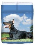 Doberman Pinscher Dog Duvet Cover