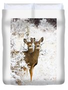 Doe Mule Deer In Snow Duvet Cover