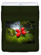 Dogwood Berries Duvet Cover