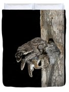 Eastern Screech Owls At Nest Duvet Cover
