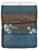 Egrets Robbing A Cormorant Duvet Cover