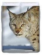 Eurasian Lynx In Snow Duvet Cover