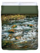 Fall Colors Stream Great Smoky Mountains Painted  Duvet Cover