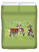 Fallow Deer Duvet Cover